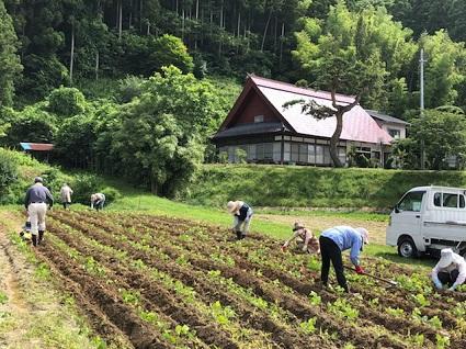 伝統野菜教室・番外編�.jpg