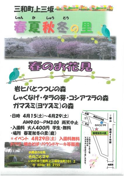 smallsize 春夏秋冬の里春のお花見(きのことマサ).jpg